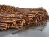BC Log Exports - 1