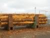 BC Log Exports - 3