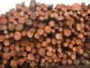 BC Log Exports - 6