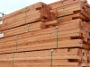 BC Lumber for Manufacturing and Export - 4