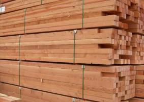 BC Lumber Export - Image 4